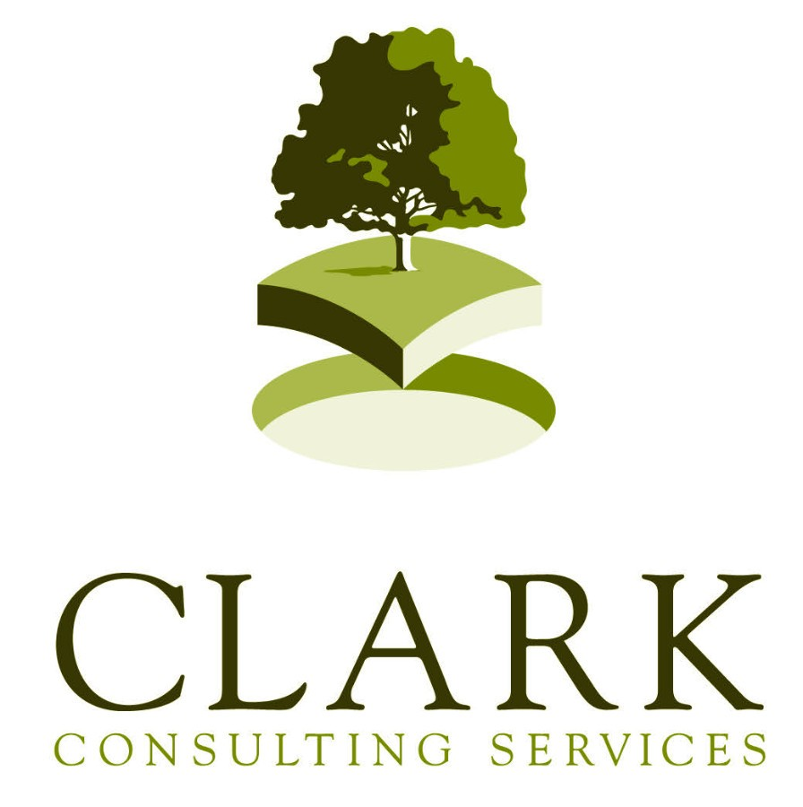 Clarke Consulting